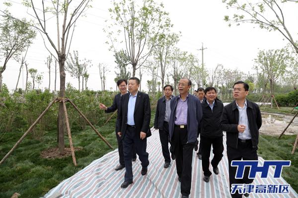 天津高新区两委领导深入实地查看区域环境整治工作